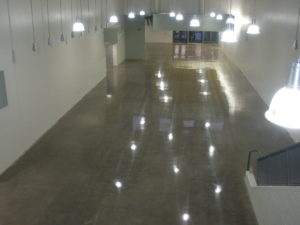 Mechanically Polished New Concrete Floor